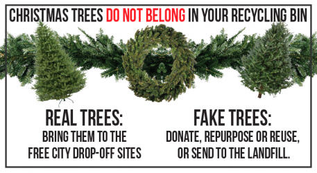 Christmas Trees Are NOT Recyclable (Real or Fake)