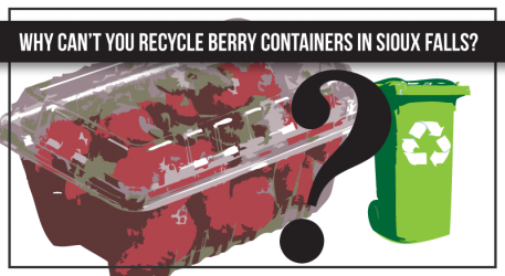 Why Not Berry Containers?
